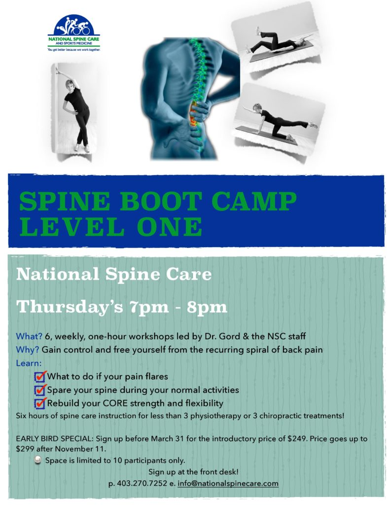 Spine Boot Camp Level One