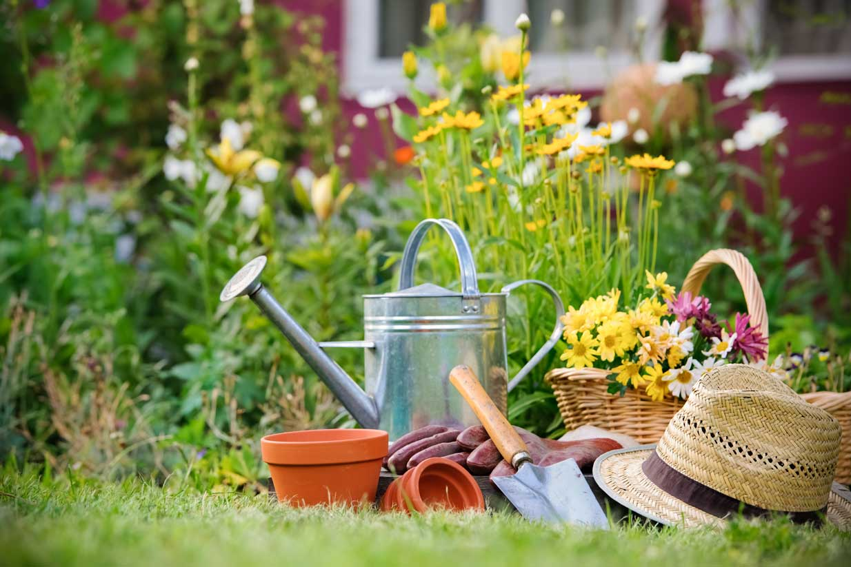 Gardening Safely in Calgary | National Spine Care